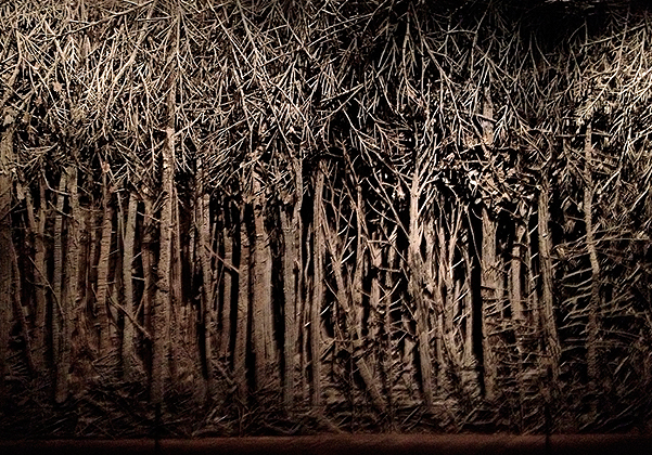 Eva Jospin - forest