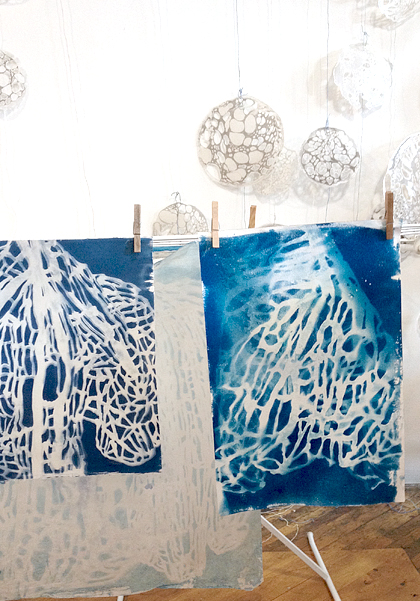 phases-cyanotype-process-2